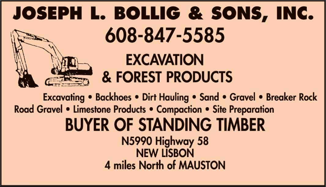 Joseph L. Bollig and Sons, Inc.