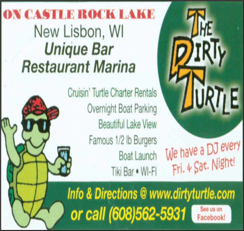 The Dirty Turtle